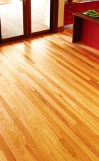 Timber Flooring Adhesives